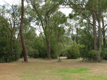 Healesville natural burial ground for green funerals