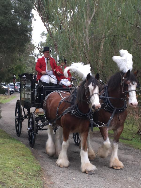 Funeral Services with Horse Drawn Hearse Available